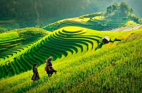 foto de Paisajes de Vietnam y Camboya